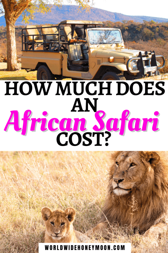 How Much Does an African Safari Cost