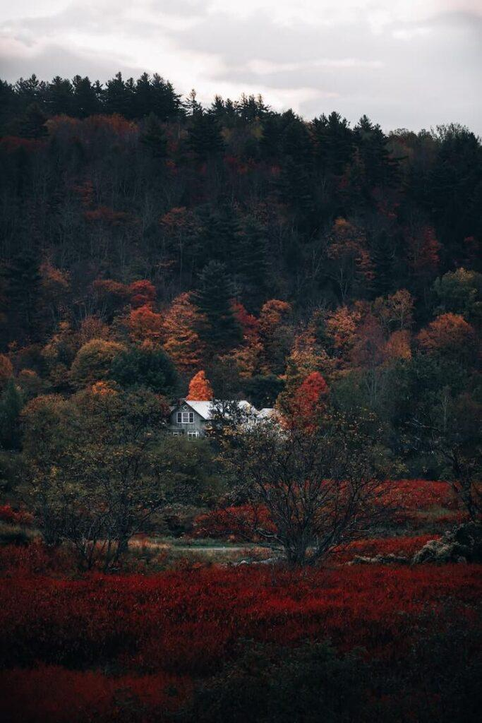 Stowe Vermont in the fall