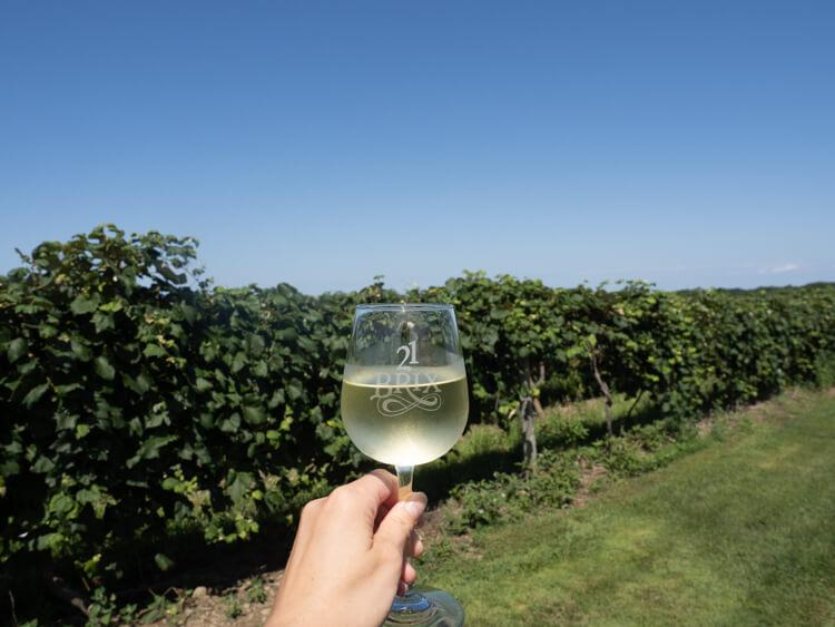 21 Brix - Chautauqua Lake - Hand holding a white wine glass with 21 Brix engraved on it in front of grape vines