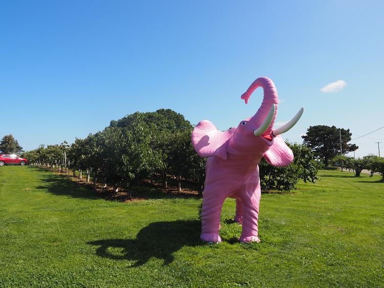 21 Brix Pink Elephant statue
