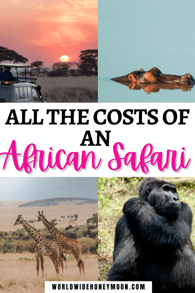 Costs of an African Safari
