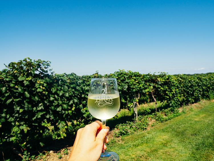 Hand holding white wine glass in front of vines at 21 Brix