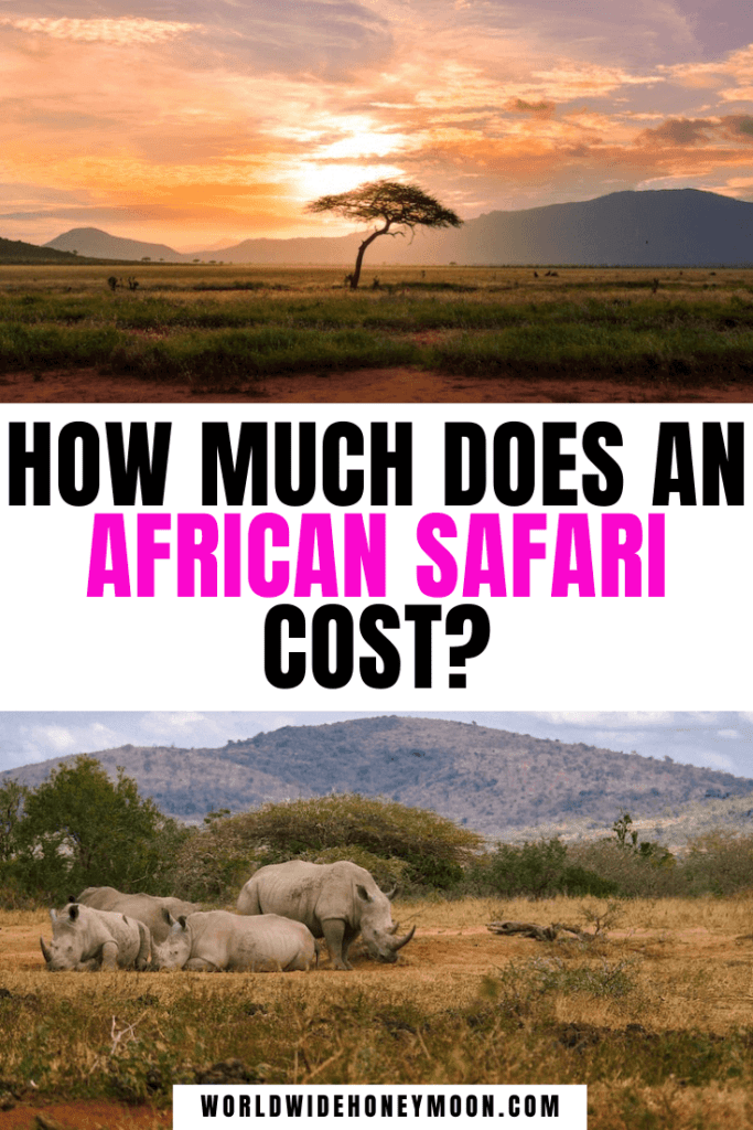 How Much Does An African Safari Cost (2)