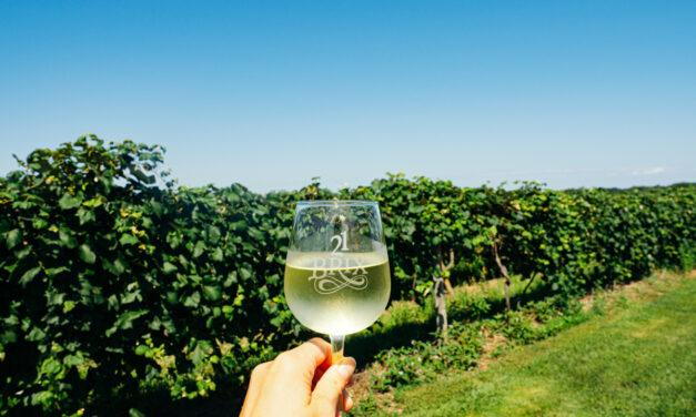 The 10 Best Lake Erie Wine Trail and Chautauqua Wineries