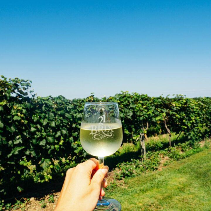 Lake Erie Wine Trail and Chautauqua Wineries | hand holding white wine glass in front of vines