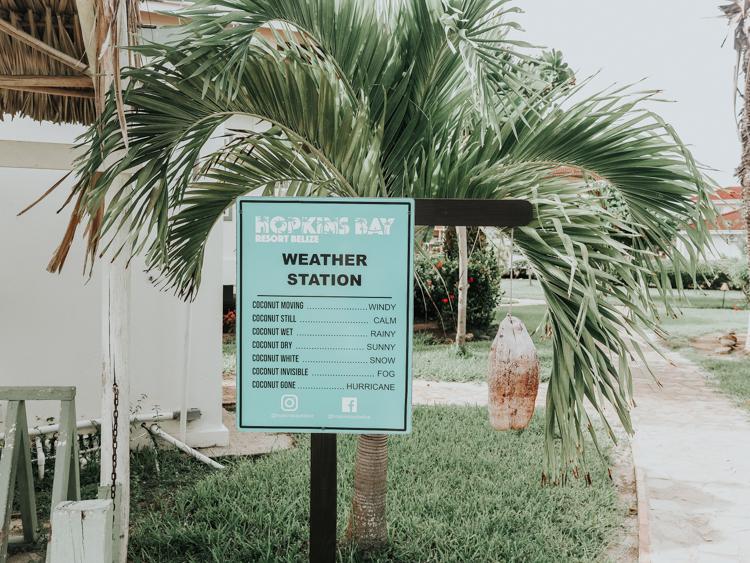Hopkins Bay Weather Station Coconut