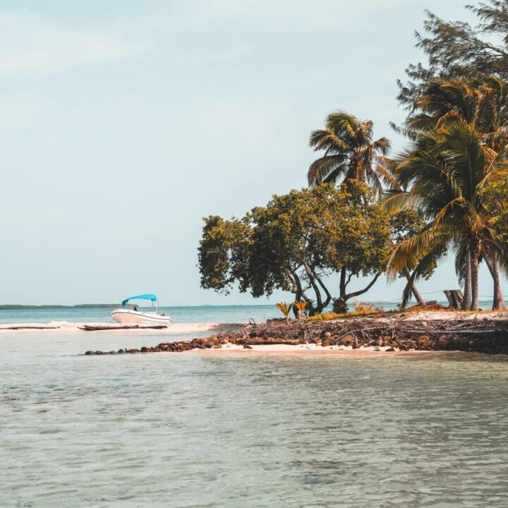 How to Plan the Ultimate Belize Honeymoon - Thatche Caye island with boat on sand and palm trees by the beach