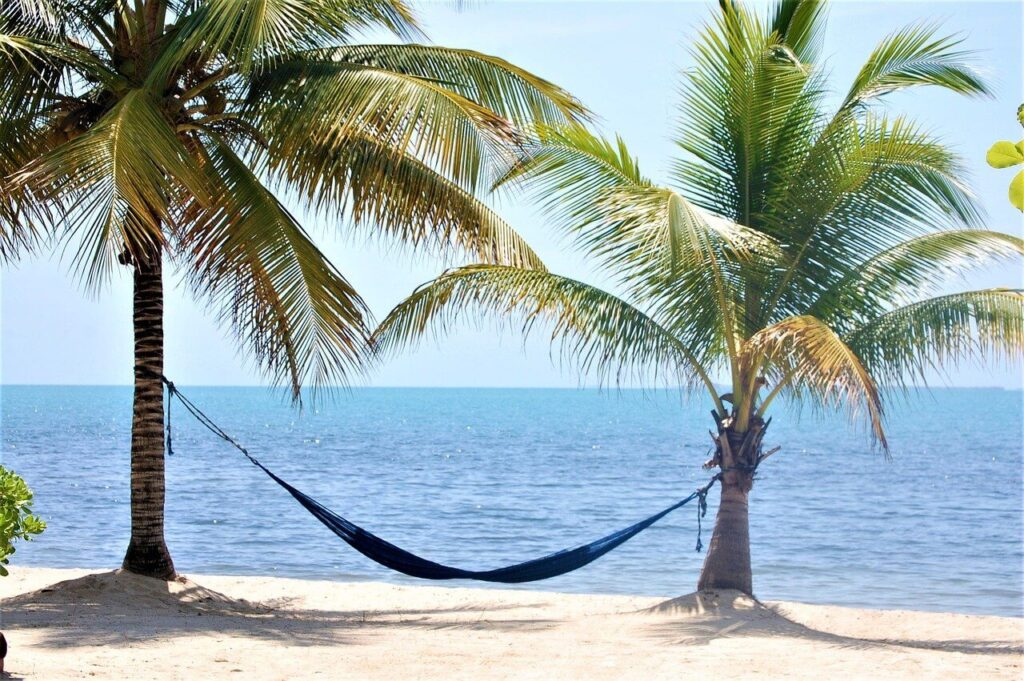 Palm trees with a hammock on the beach in Placencia